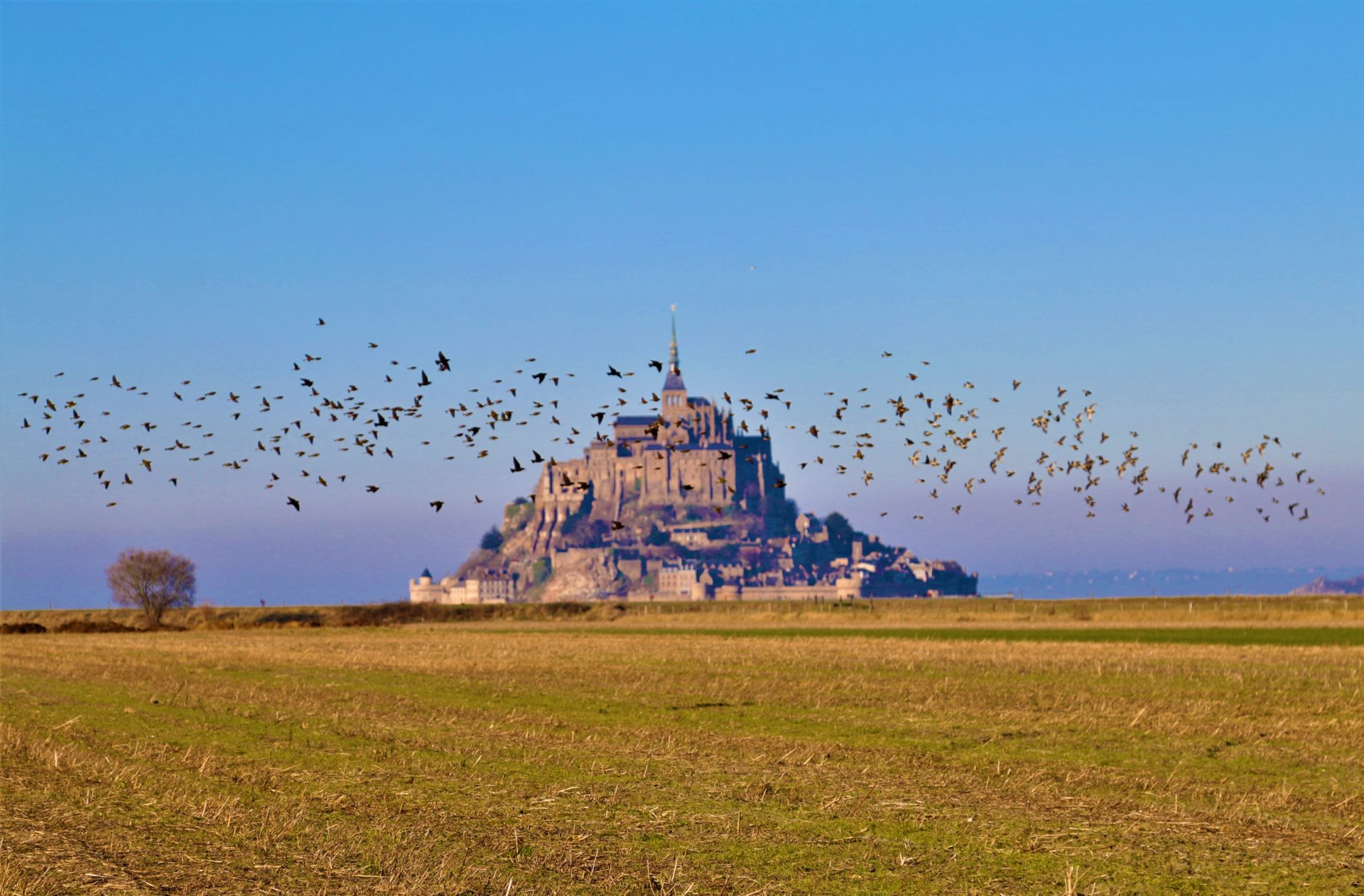 Mont St Michel – A special place in France