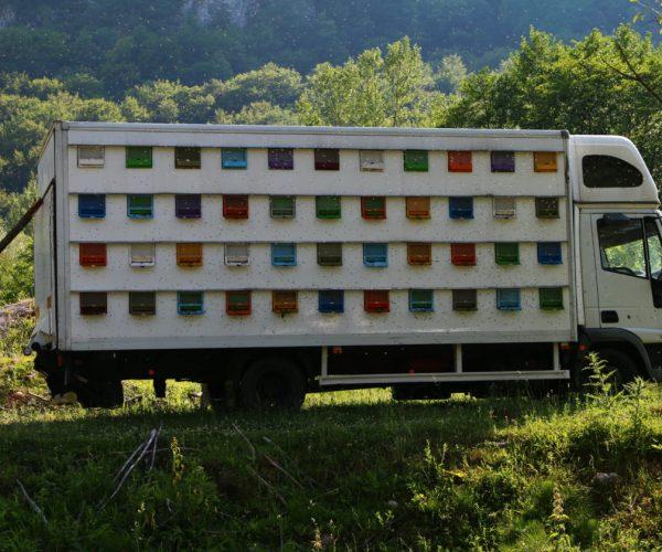 Camião Colmeia - Romania